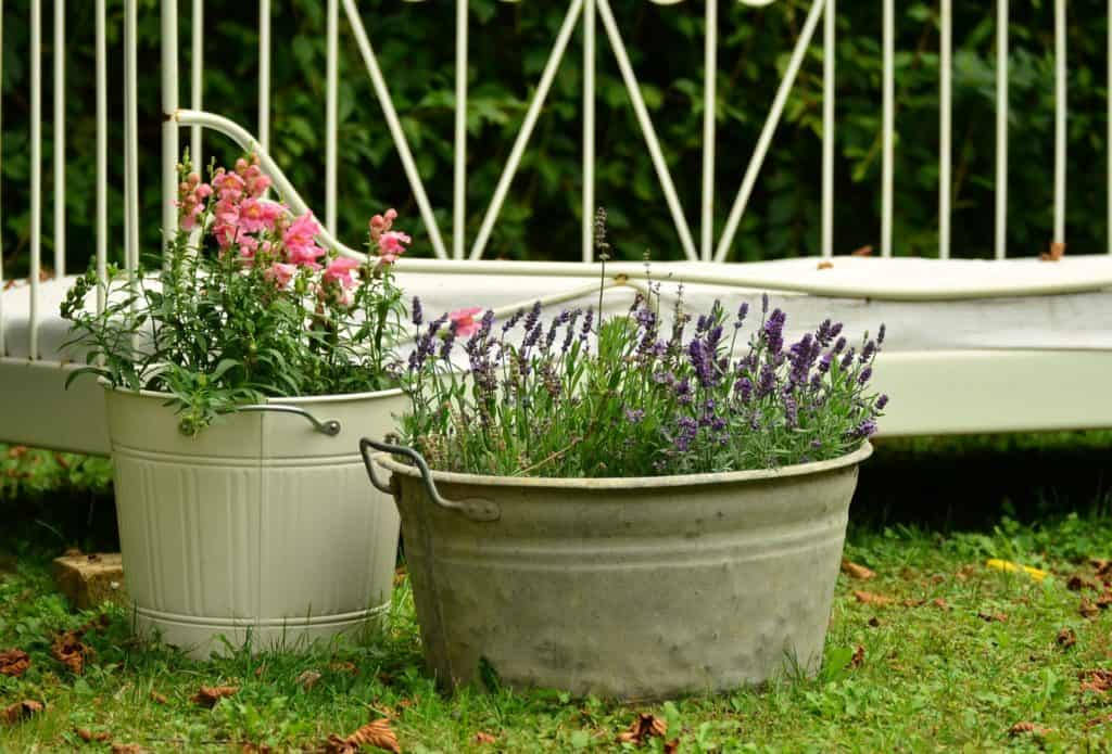 Ideas for Planters