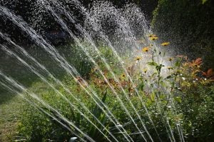 Best Drip Irrigation System - Sprinkler