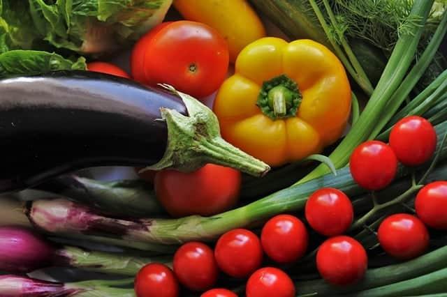 best fertilizer for gardens